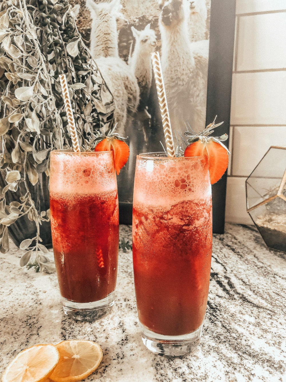 STTC BEETS COCKTAIL.jpg